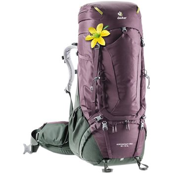 Deuter Womens Air Contact Pro 65+15 SL Rucksack Air Contact Pro 6515 SL Aubergine-ivy - Click to view larger image
